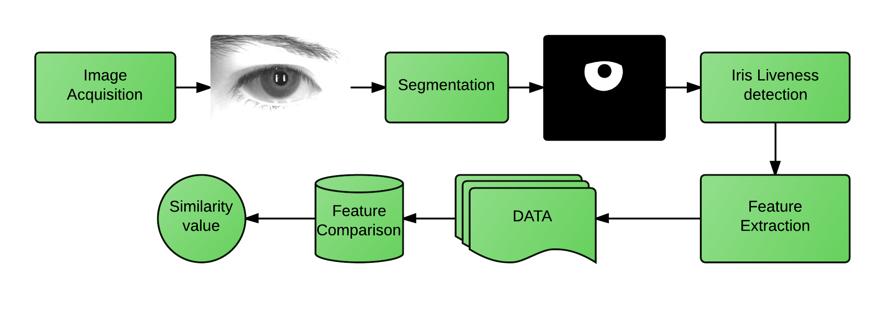 Machine Learning for biometric liveness